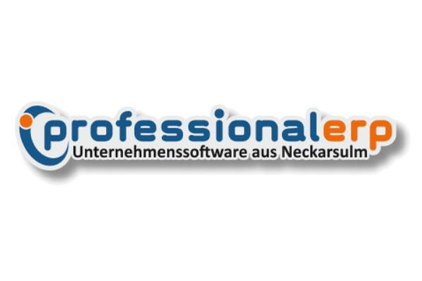 Professional ERP Logo